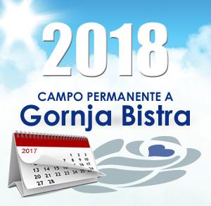 Volontariato 2018