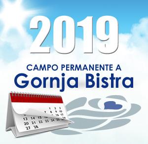 Volontariato 2019